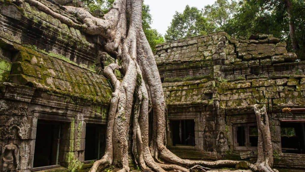 I Angkor Wat får man oppleve de karakteristiske tempelbygningene på nært hold.