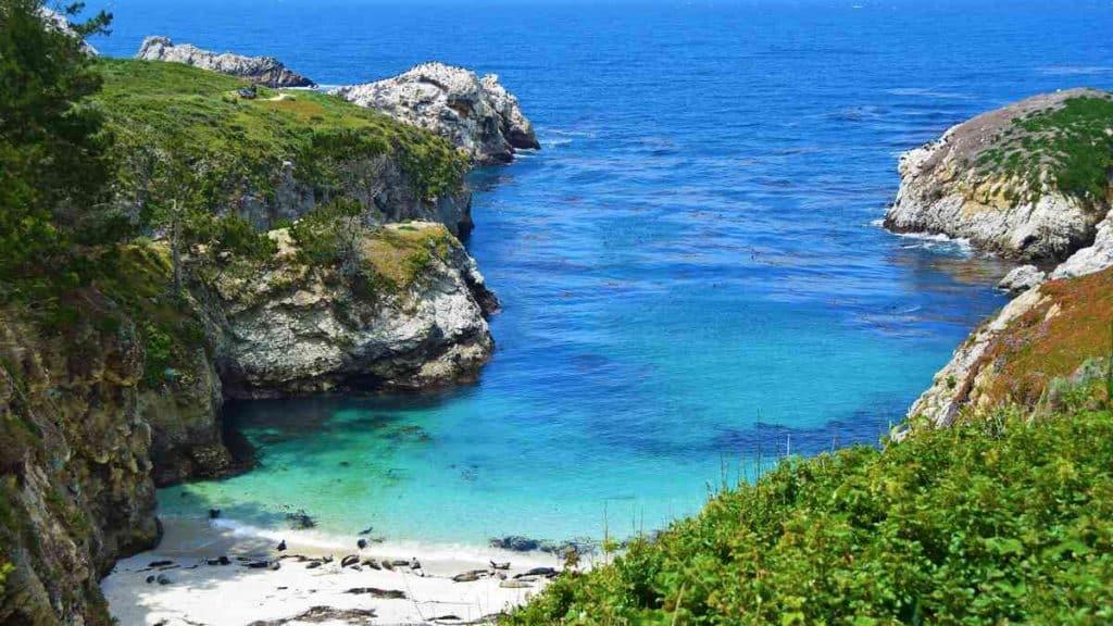 Utforsk det vakre naturlandskapet i Big Sur-distriktet.